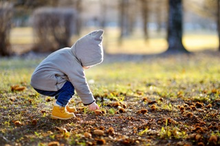 Toddler in grey jumper picking a leaf off the floor on a countryside walk