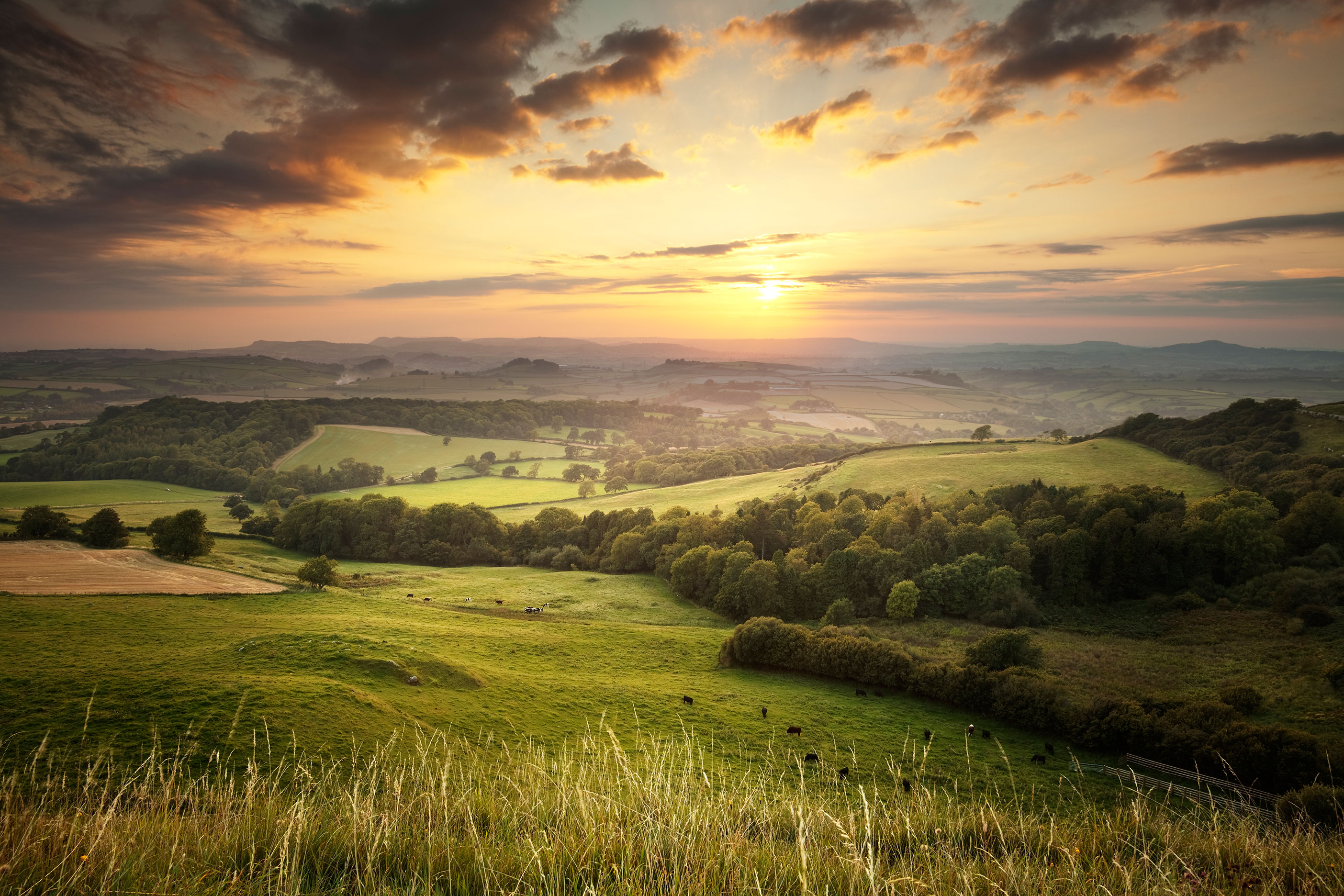 A beautiful sunset over a rural green landscape.