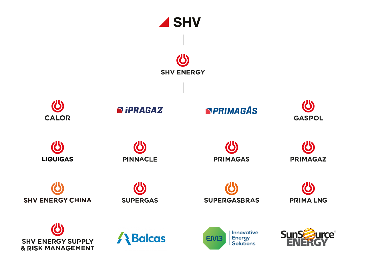 SHV Energy Structure