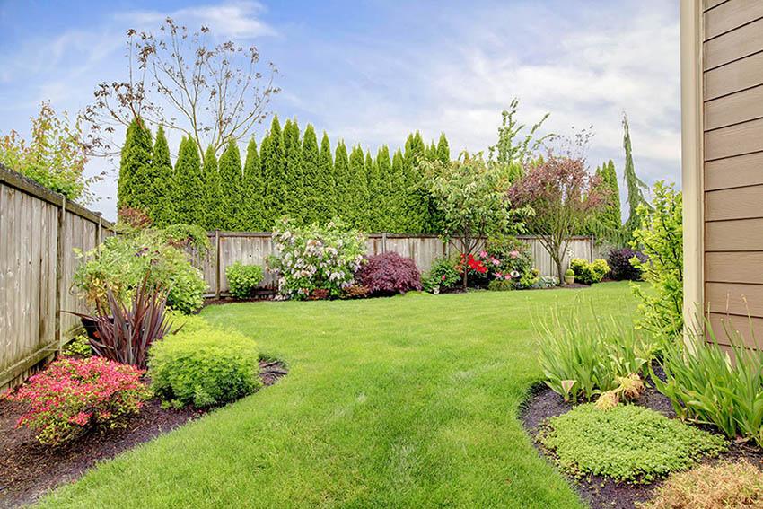 Landscaped backyard of house